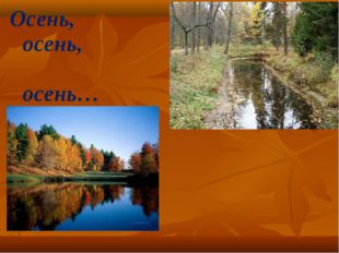 Осень, осень, осень…