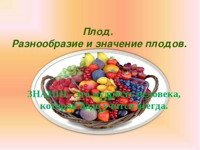 Плод. Разнообразие и значение плодов. ЗНАНИЕ- это мудрость человека, которой...