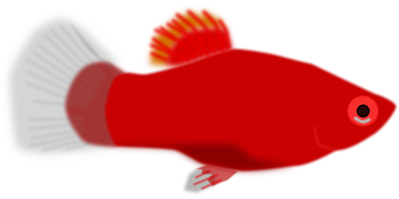 http://pixabay.com/static/uploads/photo/2012/04/15/19/27/fish-35021__180.png