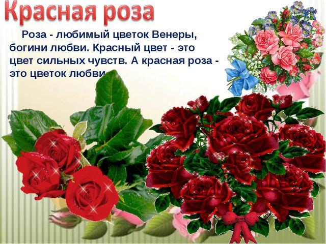 Роза - любимый цветок Венеры, богини любви. Красный цвет - это цвет сильных...