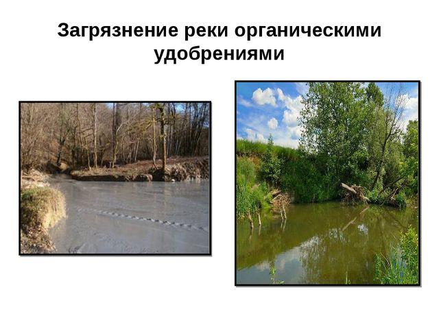 Загрязнение реки органическими удобрениями