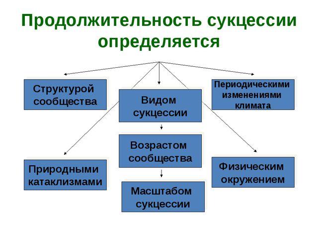 Продолжительность сукцессии определяется Структурой сообщества Видом сукцесси...