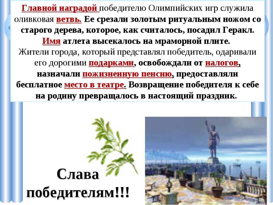 Главной наградой победителю Олимпийских игр служила оливковая ветвь. Ее среза...