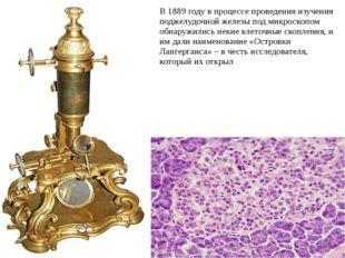 В 1889 году в процессе проведения изучения поджелудочной железы под микроско