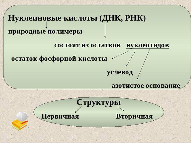 Нуклеиновые кислоты (ДНК, РНК) природные полимеры состоят из остатков нуклеот...