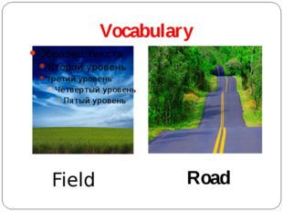 Vocabulary Field Road