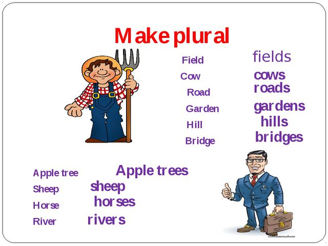 Make plural Field Cow Road Garden Hill Bridge Apple tree Sheep Horse River fi...