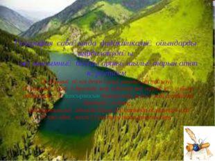 География сабағында дидактикалық ойындарды пайдаланудағы жұмысымның басты арт