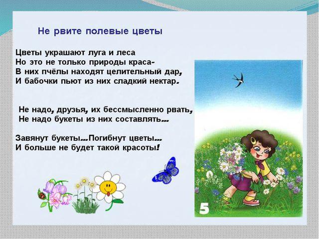 окр мир 1 класс почему мы не будем рвать цветы и ловить бабочек