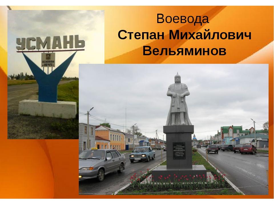 Воевода Степан Михайлович Вельяминов