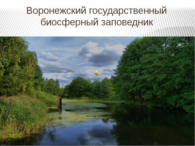 Воронежский государственный биосферный заповедник
