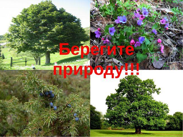 Берегите природу!!!