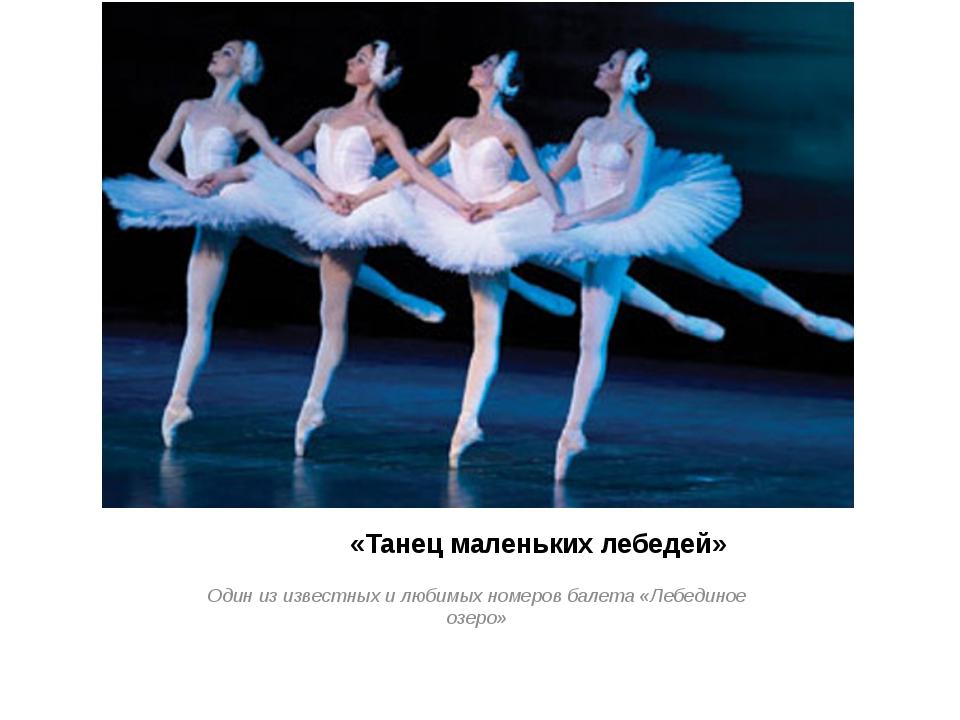 «Танец маленьких лебедей» Один из известных и любимых номеров балета «Лебеди...