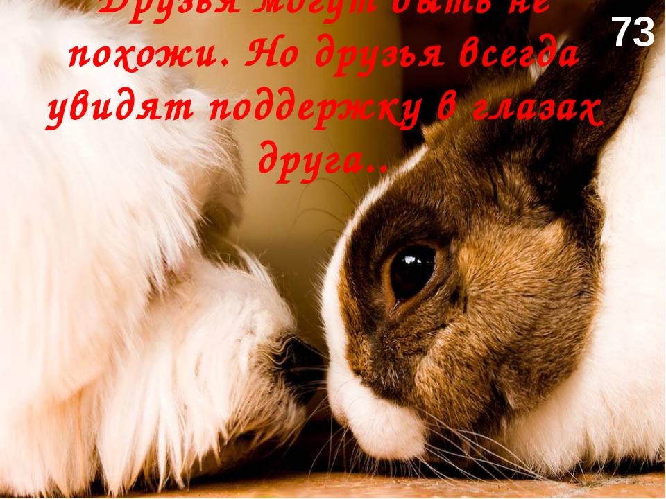 Друзья могут быть не похожи. Но друзья всегда увидят поддержку в глазах друга...