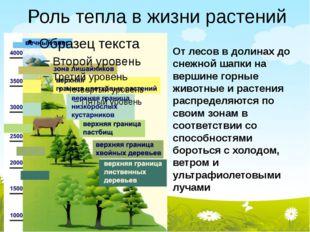 Роль тепла в жизни растений От лесов в долинах до снежной шапки на вершине го