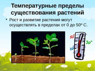 Температурные пределы существования растений Рост и развитие растения могут о
