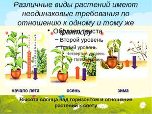 Различные виды растений имеют неодинаковые требования по отношению к одному и