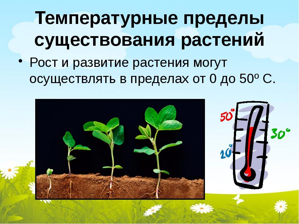 Температурные пределы существования растений Рост и развитие растения могут о...