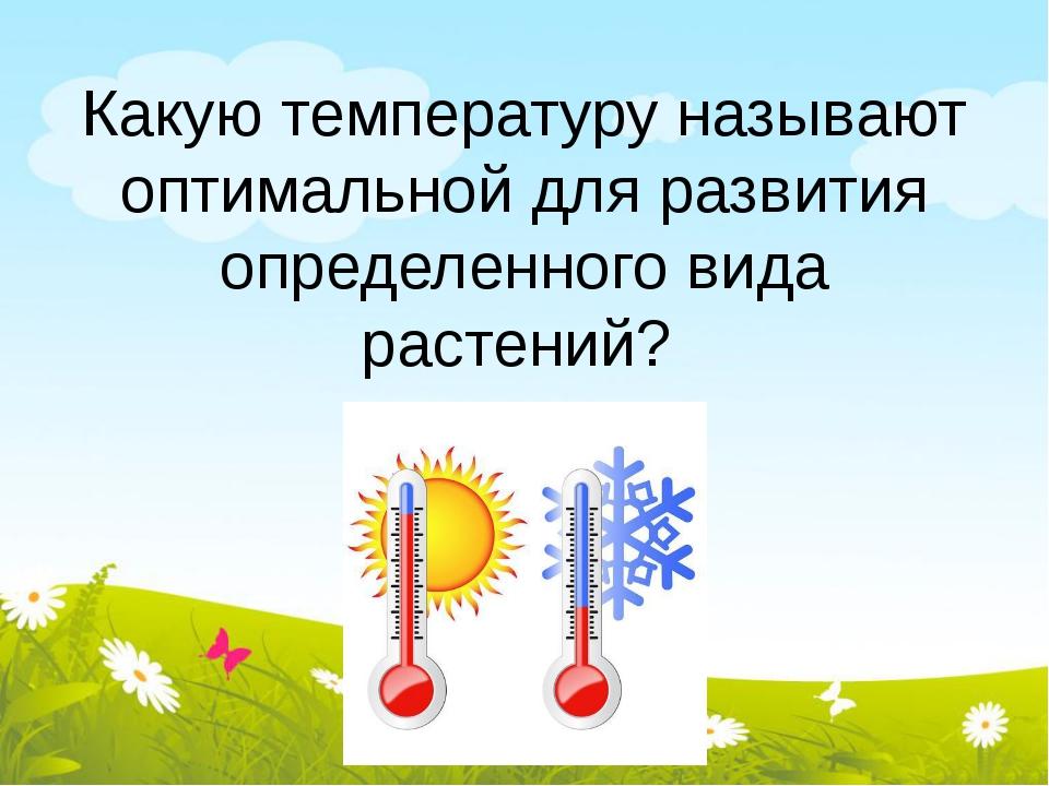 Какую температуру называют оптимальной для развития определенного вида растен...