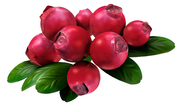 http://www.dejurka.ru/wp-content/uploads/2014/04/fruits-vegetables-illustrations11.jpg