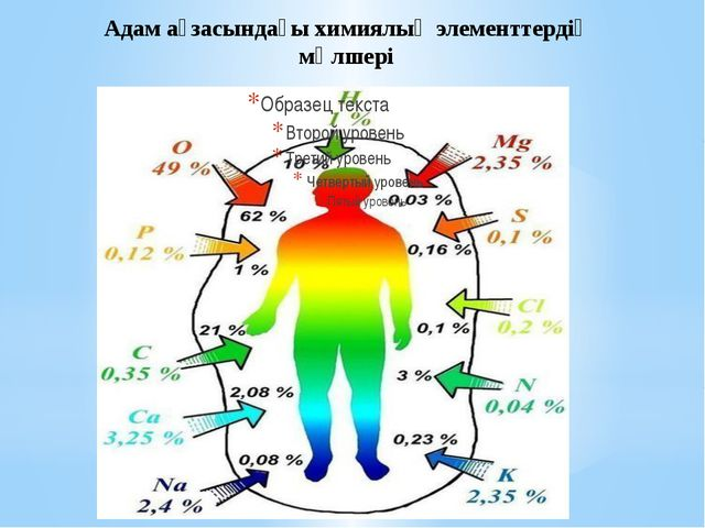 Адам ағзасындағы химиялық элементтердің мөлшері