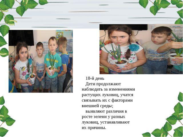 18-й день Дети продолжают наблюдать за изменениями растущих луковиц, учатся с...