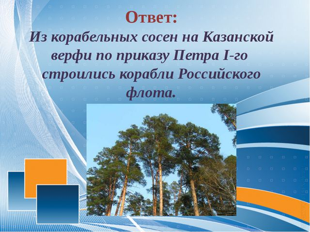 Ответ: Из корабельных сосен на Казанской верфи по приказу Петра I-го строили...