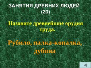 ЗАНЯТИЯ ДРЕВНИХ ЛЮДЕЙ (20) Назовите древнейшие орудия труда. Рубило, палка-ко