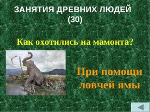 ЗАНЯТИЯ ДРЕВНИХ ЛЮДЕЙ (30) Как охотились на мамонта? При помощи ловчей ямы