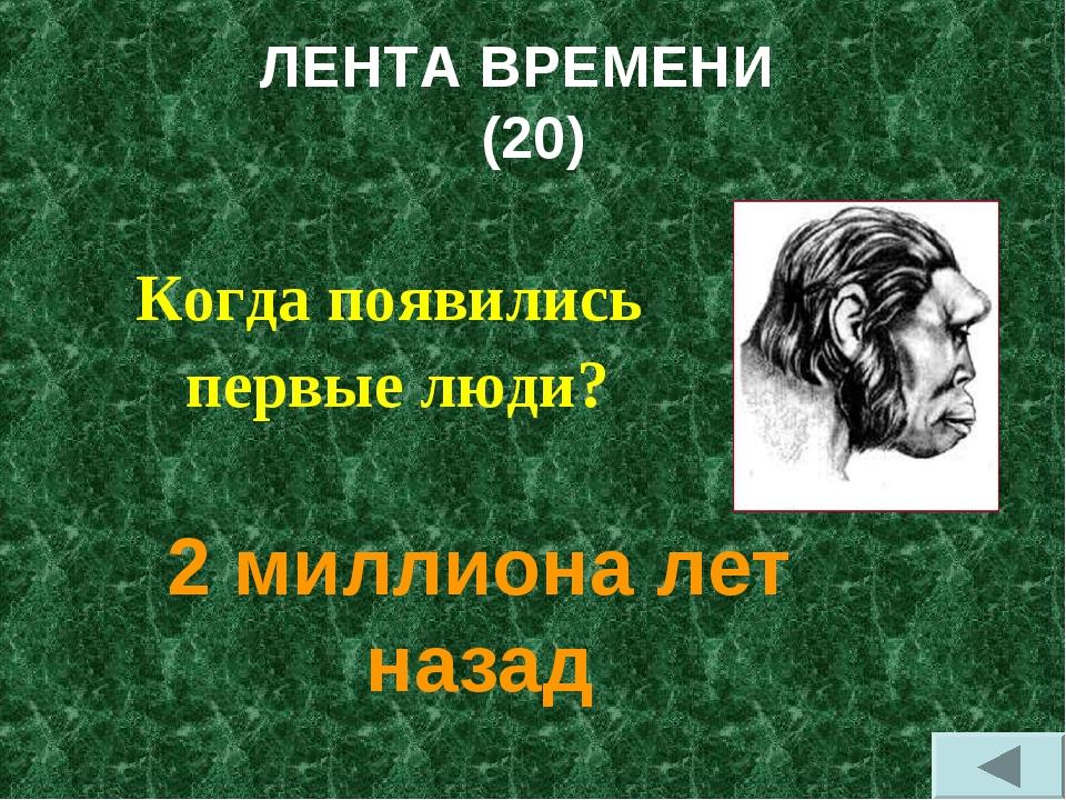 ЛЕНТА ВРЕМЕНИ (20) Когда появились первые люди? 2 миллиона лет назад