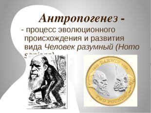 Антропогенез - - процесс эволюционного происхождения и развития вида Человек
