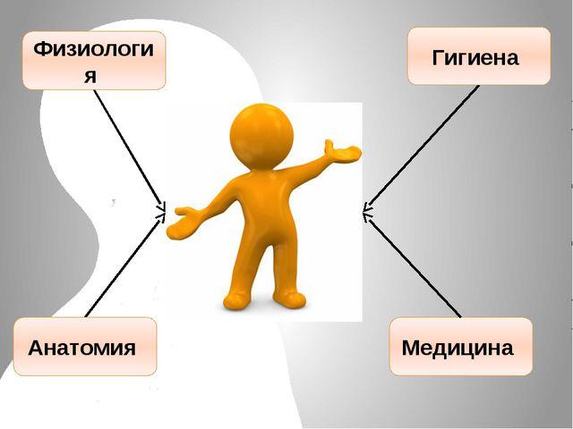 Физиология Анатомия Гигиена Медицина