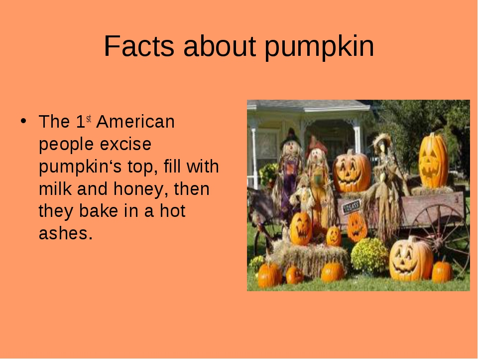 Facts about pumpkin The 1st American people excise pumpkin's top, fill with m...