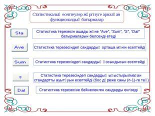Статистикалық есептеулер жүргізуге арналған функционалдық батырмалар Статисти