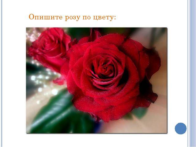 Опишите розу по цвету: