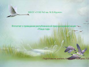 Фотоотчет о проведении республиканской природоохранной акции «Птица года» МБ