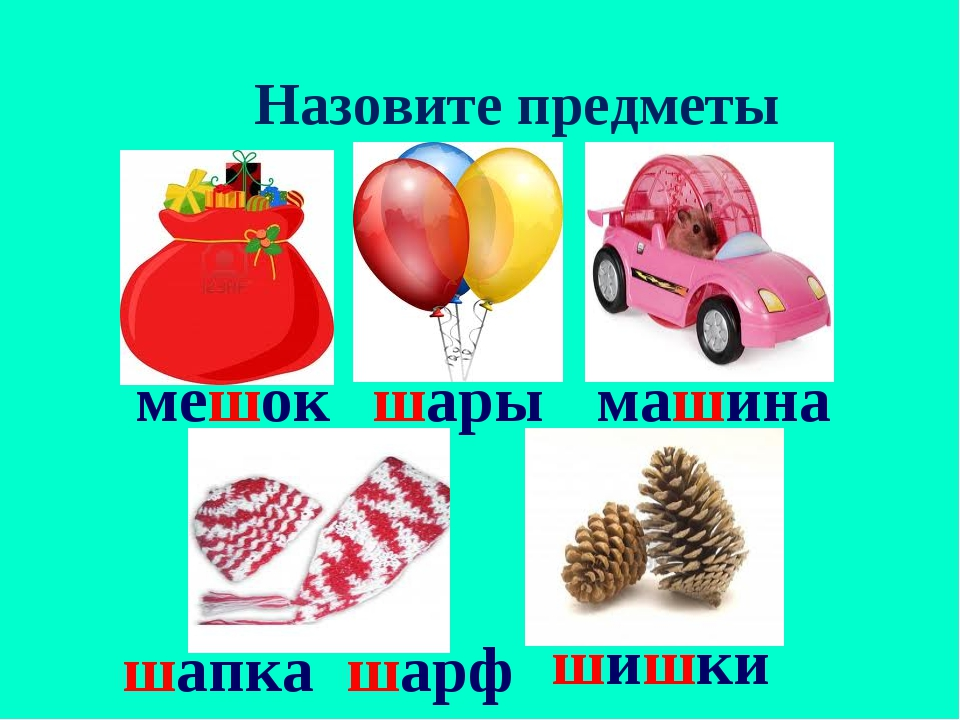 Назовите предметы мешок шары машина шапка шарф шишки