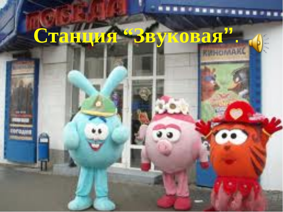 """станция """"Звуковая"""". Станция """"Звуковая""""."""