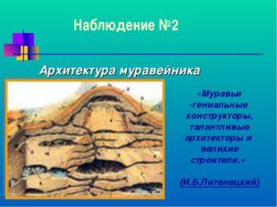 Наблюдение №2 Архитектура муравейника «Муравьи -гениальные конструкторы, тала
