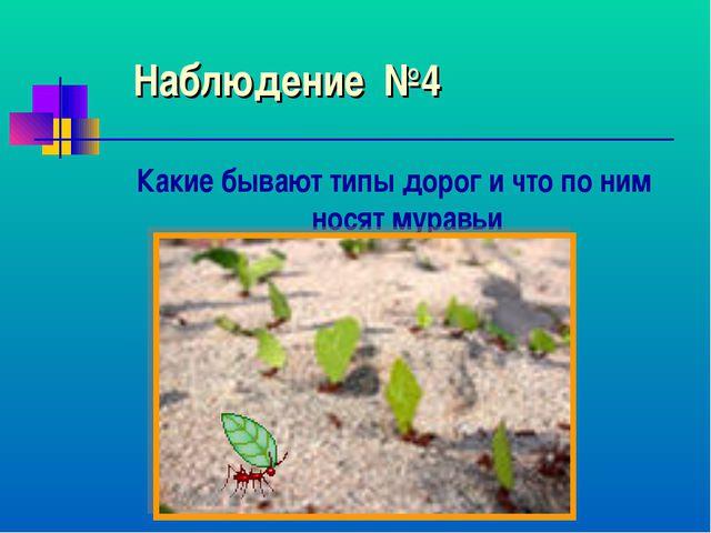 Наблюдение №4 Какие бывают типы дорог и что по ним носят муравьи