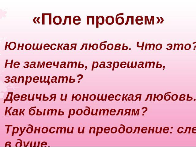 «Поле проблем» Юношеская любовь. Что это? Не замечать, разрешать, запрещать?...