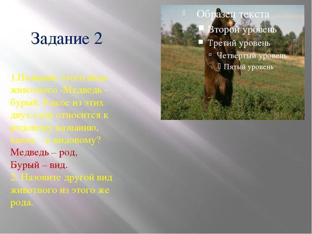 Задание 2 1.Название этого вида животного -Медведь - бурый. Какое из этих дву...