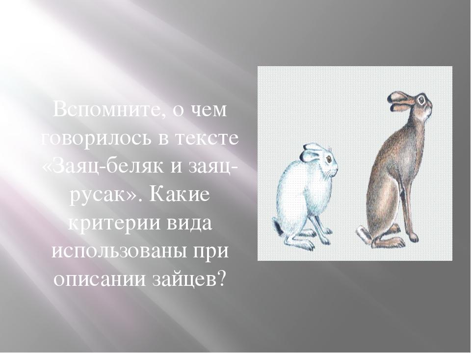 Вспомните, о чем говорилось в тексте «Заяц-беляк и заяц-русак». Какие критери...