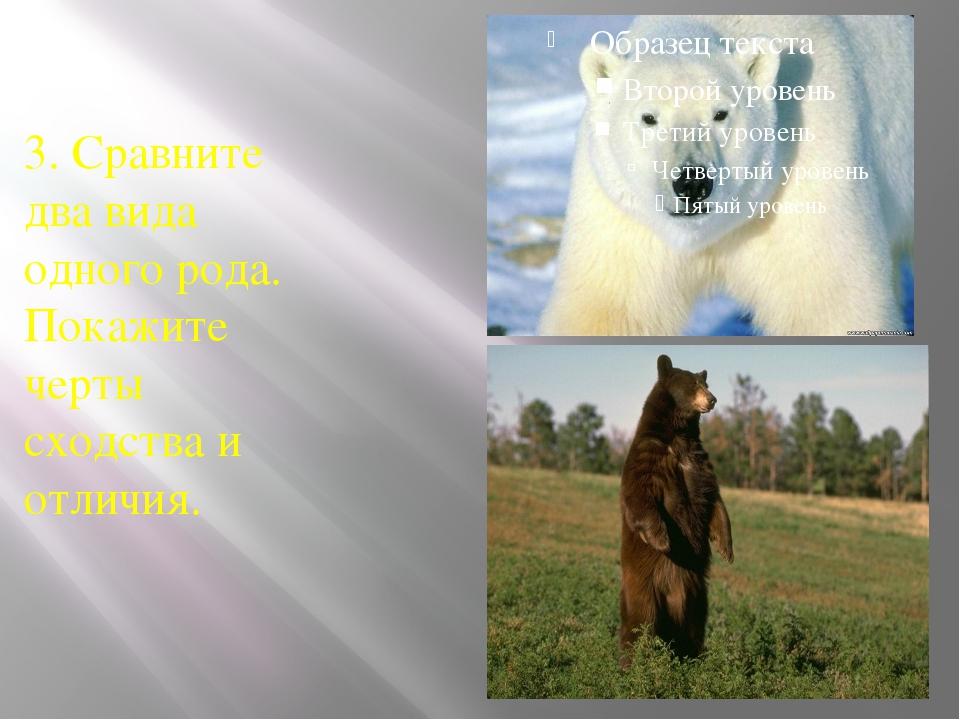 3. Сравните два вида одного рода. Покажите черты сходства и отличия.