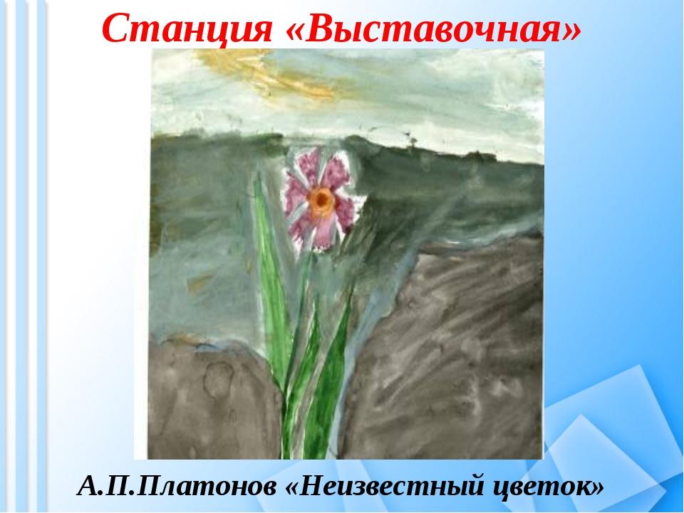 Станция «Выставочная» А.П.Платонов «Неизвестный цветок»