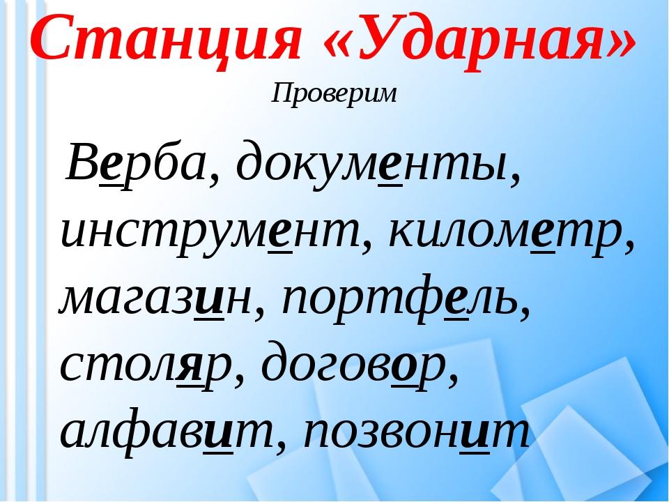 Станция «Ударная» Проверим Верба, документы, инструмент, километр, магазин, п...