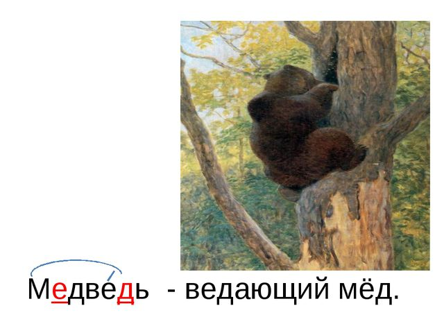 Медведь - ведающий мёд.