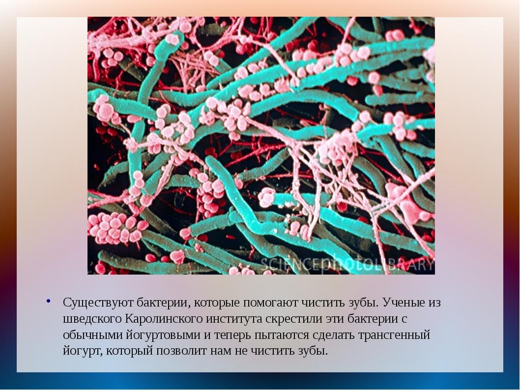 Существуют бактерии, которые помогают чистить зубы. Ученые из шведского Карол...