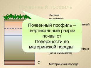 а б В 2. Что такое плодородие почвы? Способность почвы давать высокие урожаи