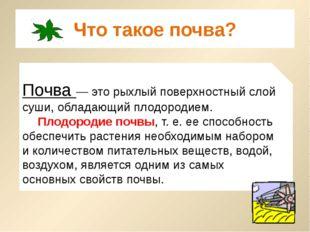 Что такое почва? Почва — это рыхлый поверхностный слой суши, обладающий плодо
